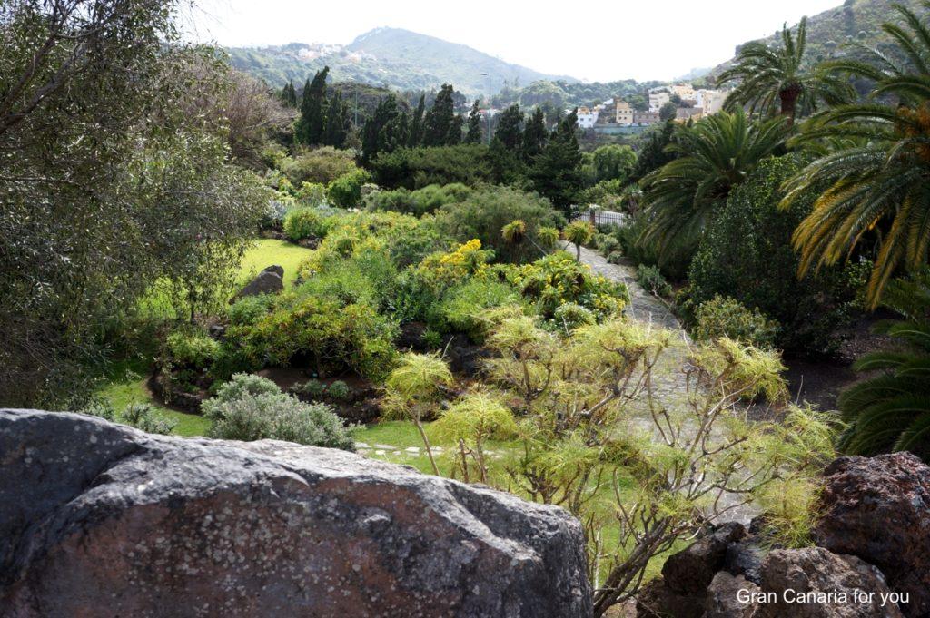 jardin-botanico-canario-5