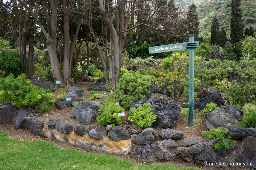 jardin-botanico-canario-6