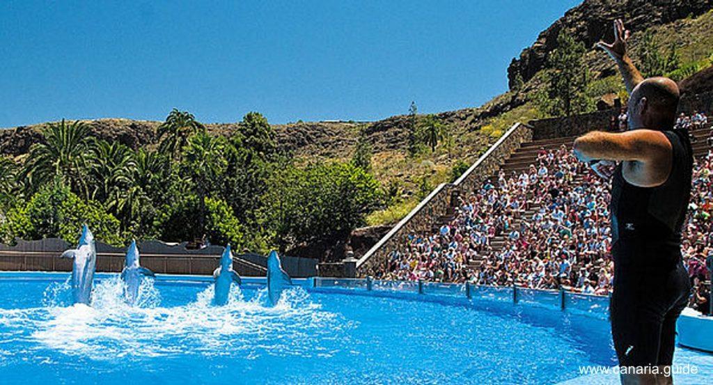 Gran Canaria pre deti, Palmitos Park