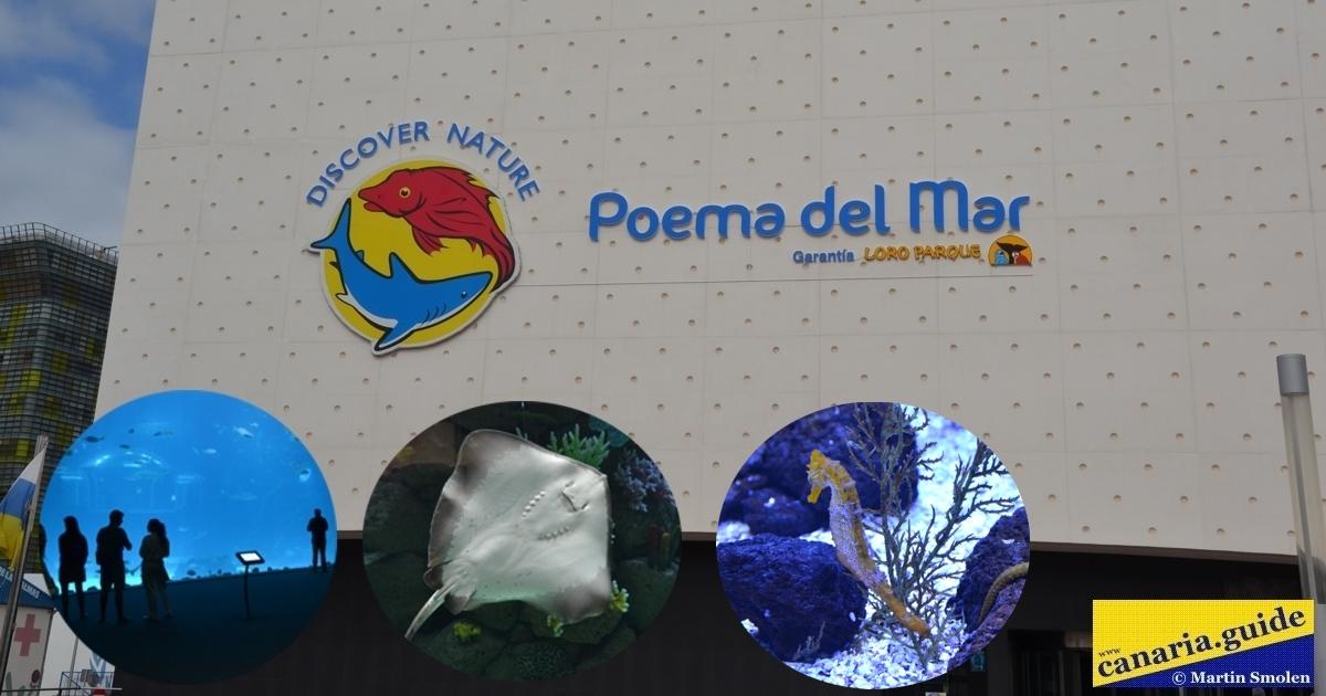 Poema del Mar, Gran Canaria